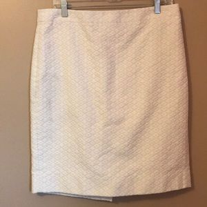 NWT J. Crew Skirt